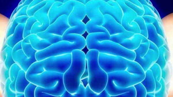 Практика «Кнопки мозга»
