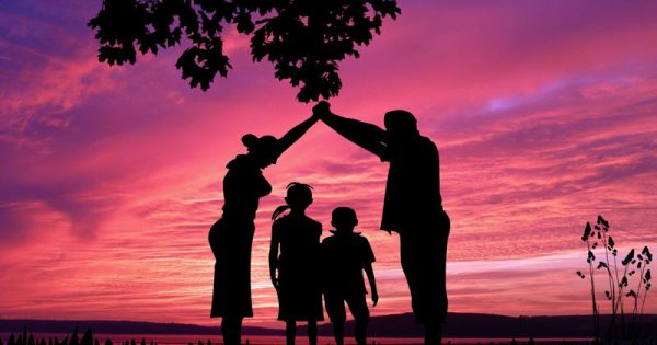 Развитие семьи и семейные кризисы
